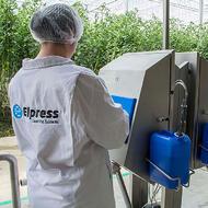 La nécessité de l'hygiène des mains dans l'horticulture en serre