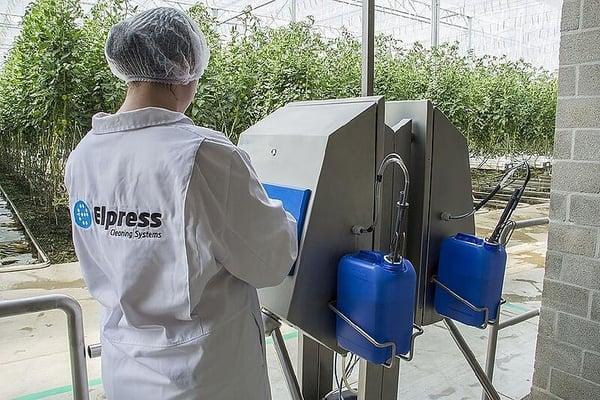 El diseño adecuado de una buena higiene personal en el cultivo en invernadero