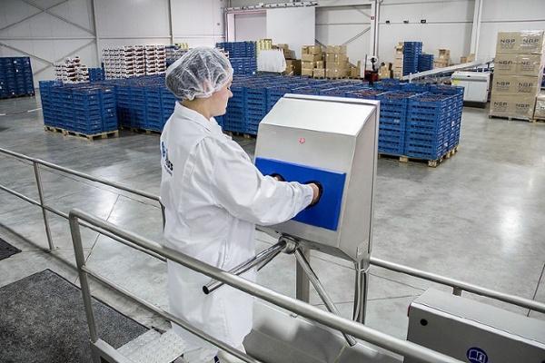 Una higiene adecuada en el cultivo en invernadero: ¿cómo motivar a sus empleados?